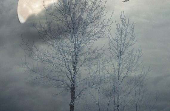 Bare Trees Cry & The Moon Doth Wane